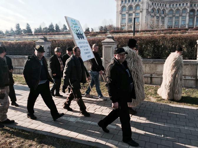 oierii-protest ciobani parlament - proteste