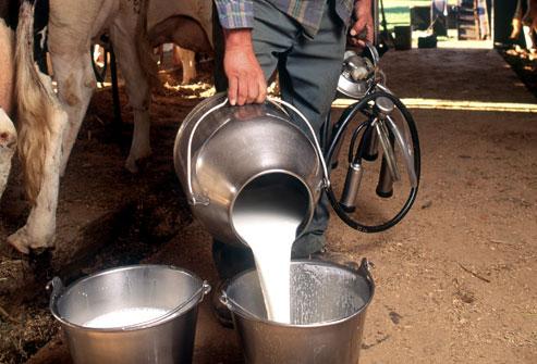 lapte-producatori-ue-cereri