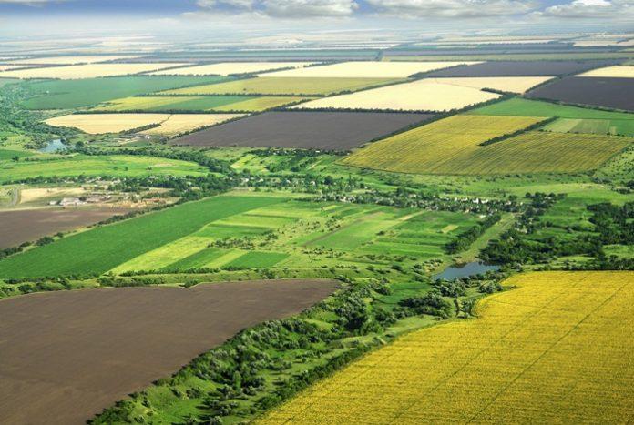 românii-terenuri-agricole-restricții-afir-înverzire