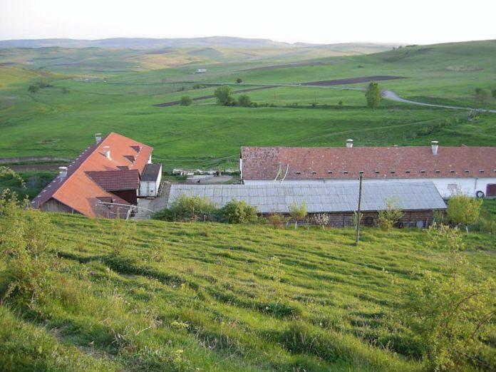 vanzare-ferme-pasari-loc-deusu-zona-ferma-tapova-cluj_4