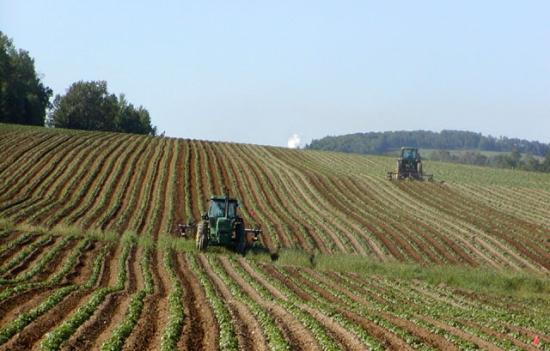 exploatatii-agricole-INS