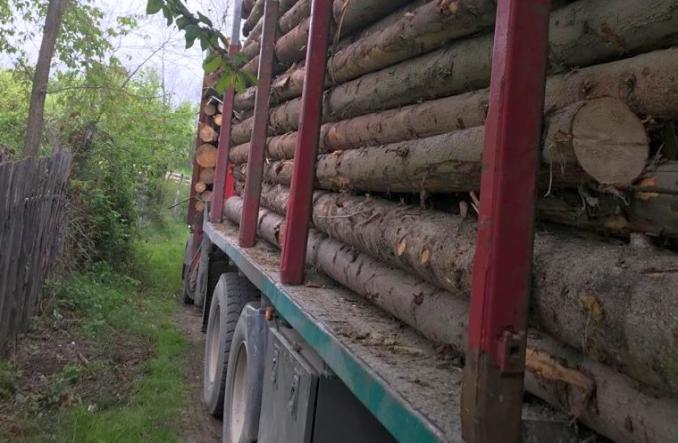 material lemnos