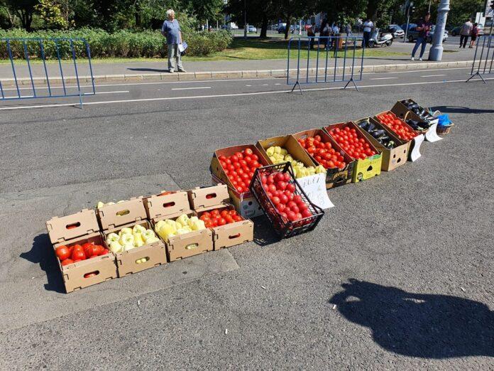 protest cu legume în Piața Victoriei